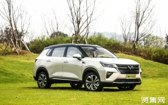 SUV市场火热,五菱星辰能否脱颖而出?